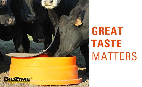 Great Taste Matters