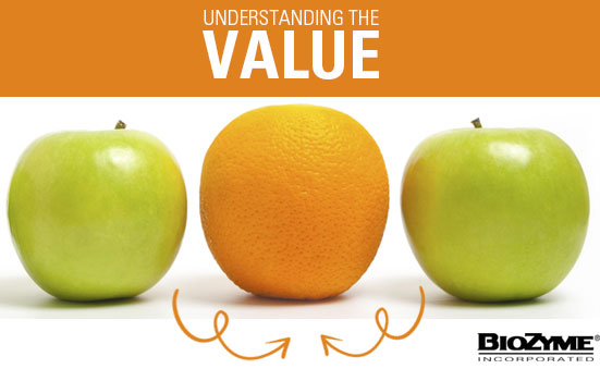Understanding The Value
