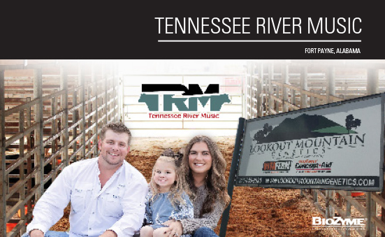 Dealer Spotlight: Tennessee River Music