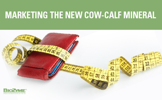 Marketing the New Cow-Calf Mineral