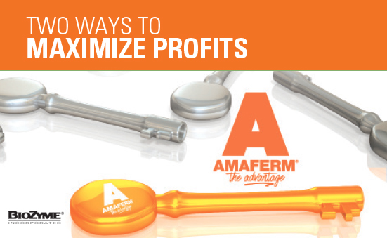 Two Ways to Maximize Profits