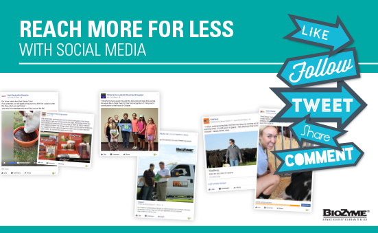 Reach More for Less with Social Media