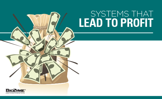 Systems That Lead To Profit