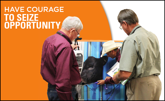 Have Courage to Seize Opportunity