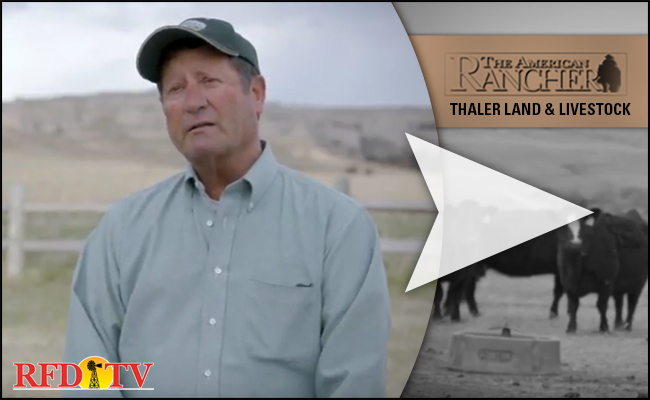 The American Rancher Featuring Vita Charge and Thaler Land & Livestock