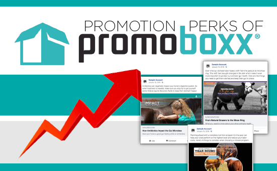 Growth with PromoBoxx