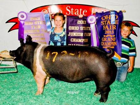 Kevin Wendt, Wendt Livestock | Ohio