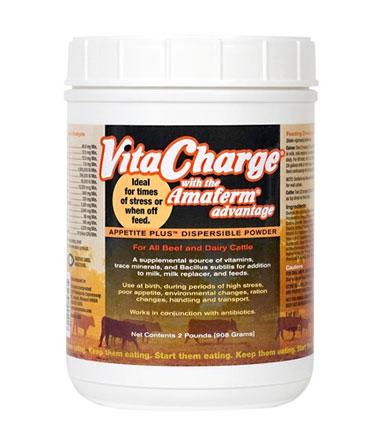 Vita Charge Dispersible Powder