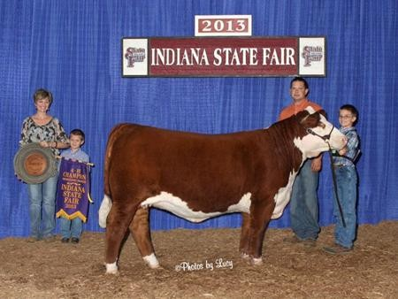2013-in-statefair_champ4-hherefordheifer_lukeharker