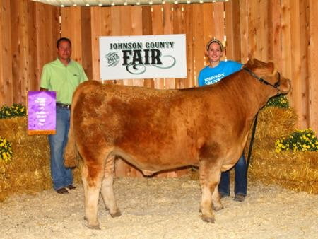 2013-johnsoncofair_champchianinaheifer_mallorymeek