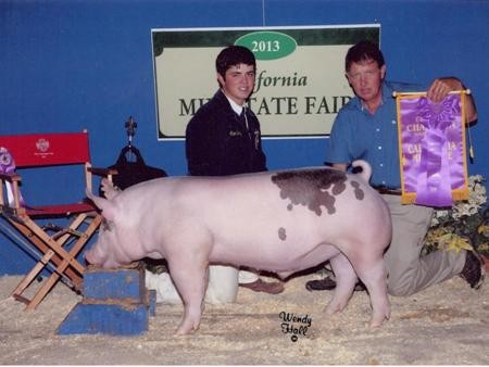 2013-midstatefair_grandchampion_alexborba