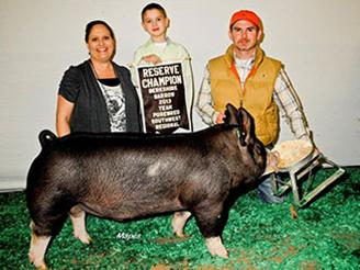 2013-teampurebredsw_reschampberkshirebarrow_karsonosborn