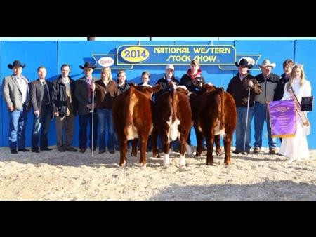 2014-nwss_champpen3hereford_dakitchherefords