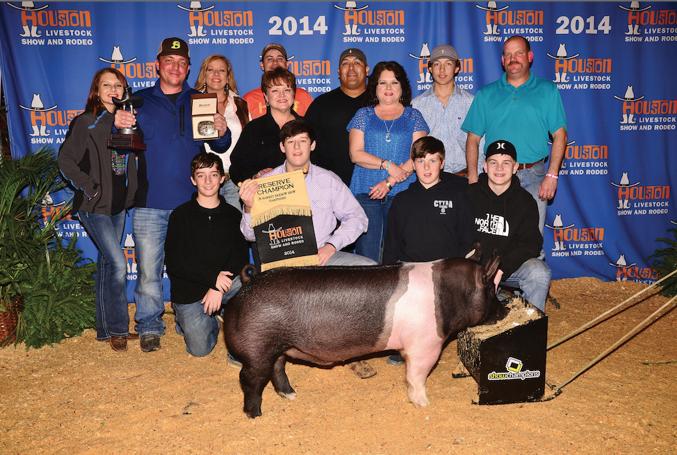Reserve Champion Hampshire Houston