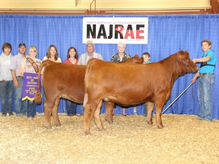 Cooper Rogers Champion Pair of Heifer North American Junior Red Angus Show[1]