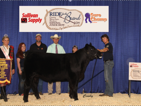 Reserve Grand Champion Bred & Owned Shorthorn Plus Steer_Tyler Hough