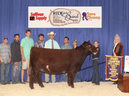 Grand Champion B&O Shorthorn Heifer_Sara Sullivan