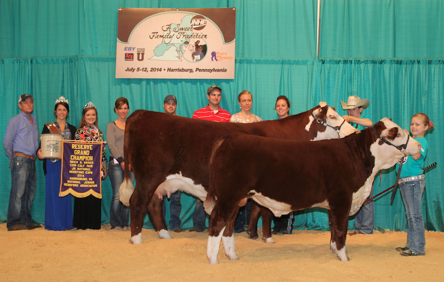 Reserve Grand Champion B&O Cow Calf Pair_ Walker Dunn