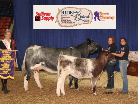 Reserve Grand Champion Shorthorn Plus Cow/Calf Pair_McKenzie Nickels