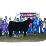 Grand Champion Steer Indiana State Fair