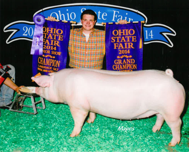 Mitchem OH State Fair