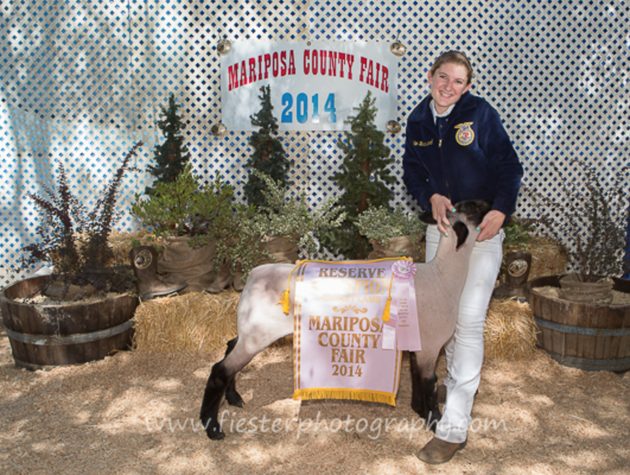 Mariposa County Lamb