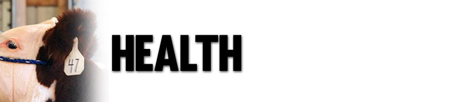 Sure-Champ-health-image
