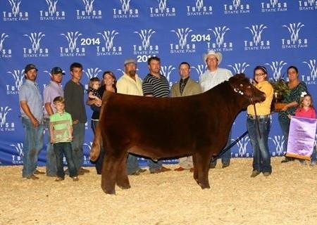Tulsa Grand Steer
