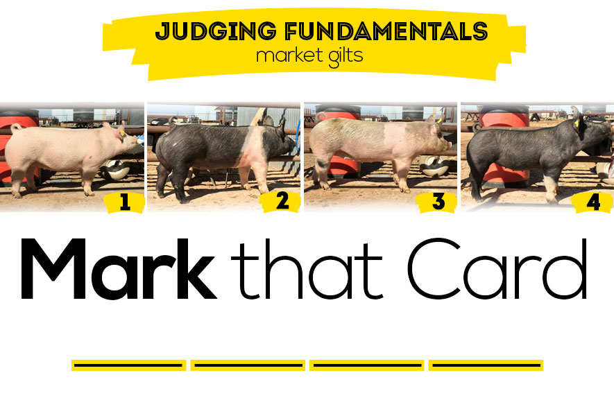 Judging-Class-Featured-Image