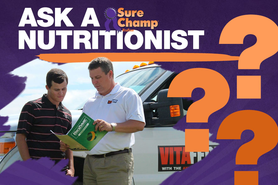 ask-sure-champ-nutritionist-feature