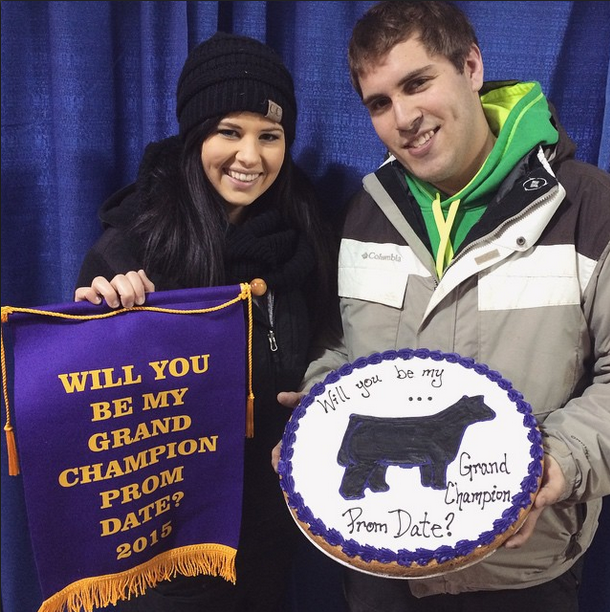 Promposals Stock Show Style Sure Champ