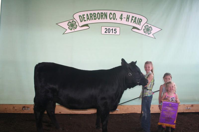 Izabella Bear-Grand Champ Heirfer-Dearborn Country Fair