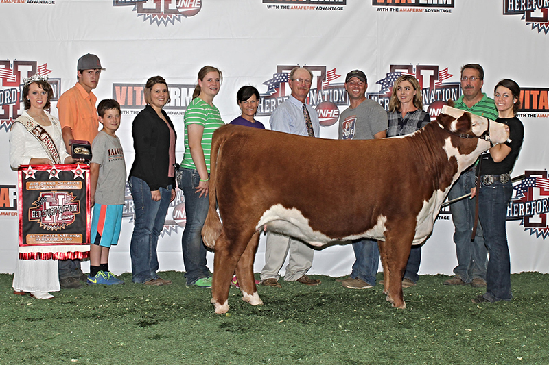 _JNHE 2015-Reserve Grand Bred and Owned Female Kagney Collins IN