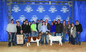 Jaeyln Sewell Grand Champion OYE