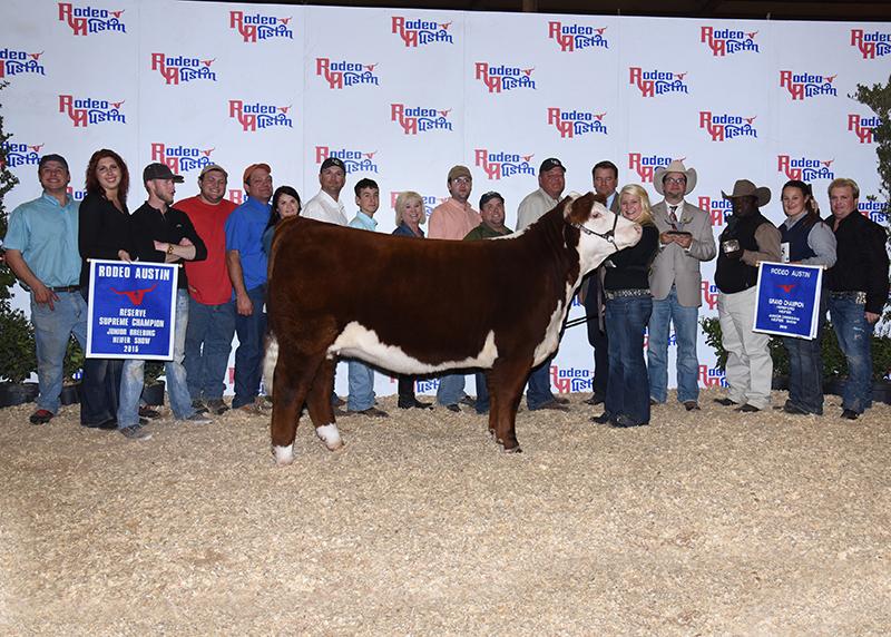 Kalli Ellis Reserve Supreme Champion Junior Breeding Heifer – Star of Texas Livestock Show