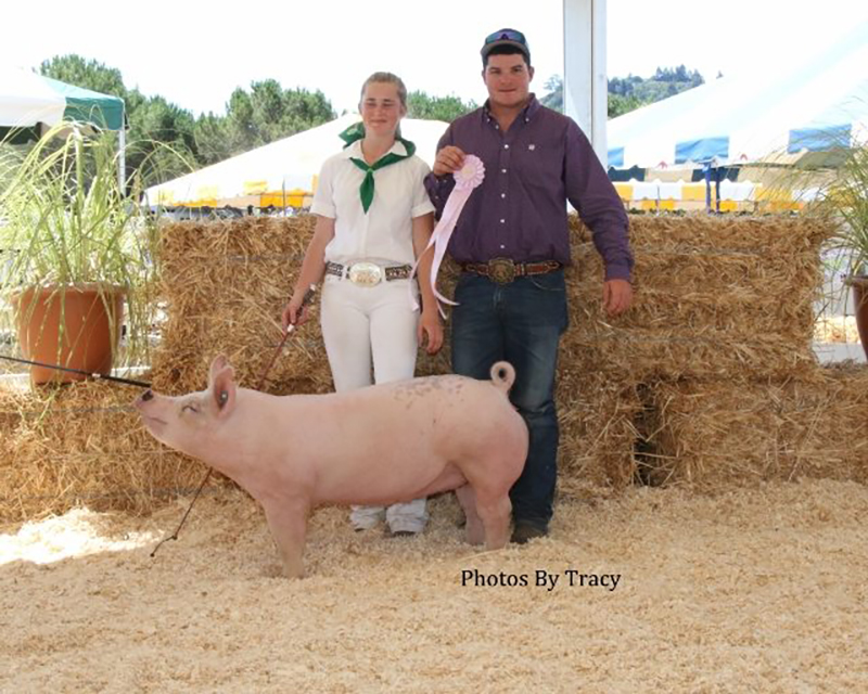 Mandy Strode-4H Reserve Champion-Marin County