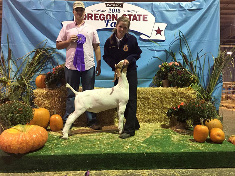 Megan Albers OR Grand Champion Market Goat Oregon State Fair