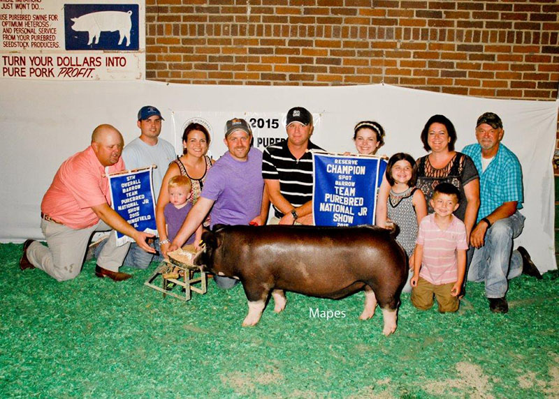 5th Overall Barrow & Reserve Spot 2015 Team Purebred Jr Show Chloe Oneal
