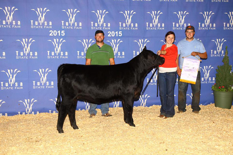 Reserve Grand Champion Balancer Female at 2015 Tulsa State Fair Open Show Rupp Ranch OK