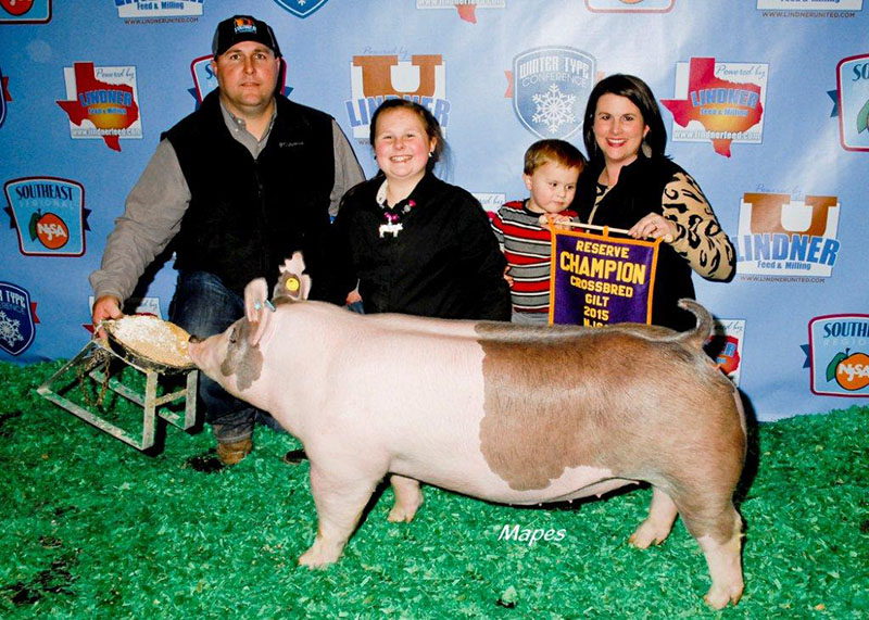 Reserve Grand Champion Crossbred Gilt NJSA Southeast Regional Savannah Page GA