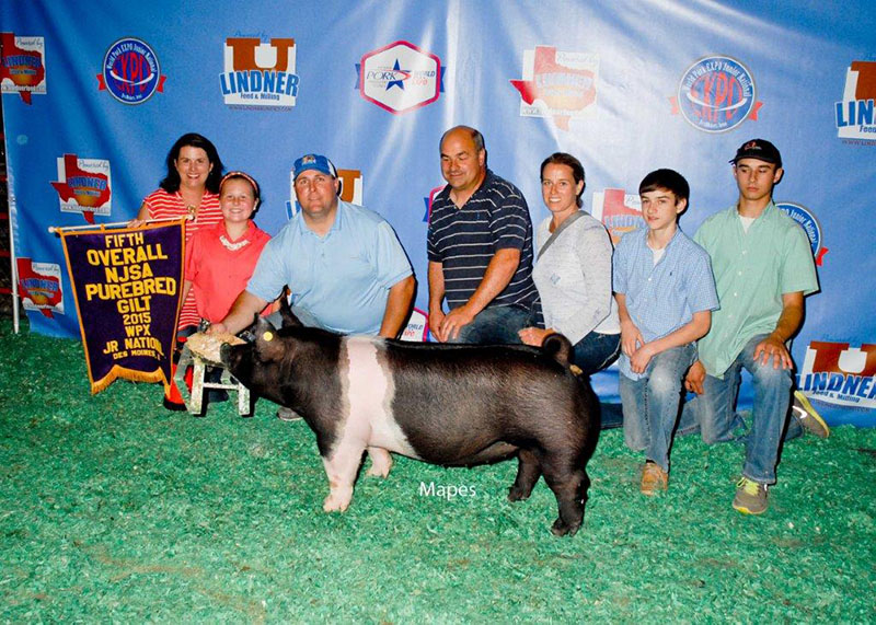 Reserve Grand Champion Hampshire Gilt World Pork Expo Savannah Page GA