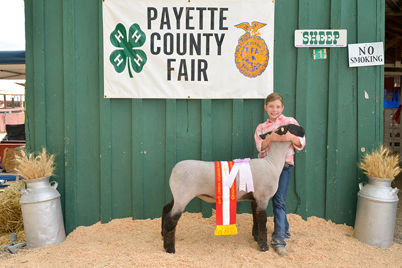 Reserve champion market lamb Emma Malson Payette ID Country Fair