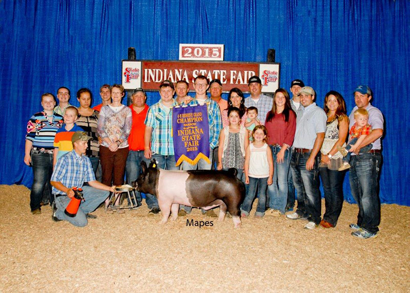 Troy Michel IN Reserve Champion Barrow Indiana State Fair