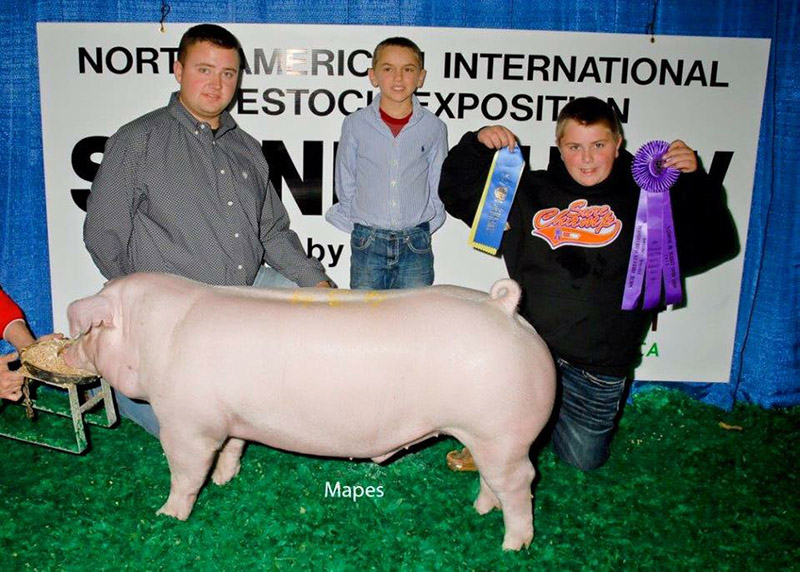 Riley Hayden_Champ Chester White Market Hog_NAILE