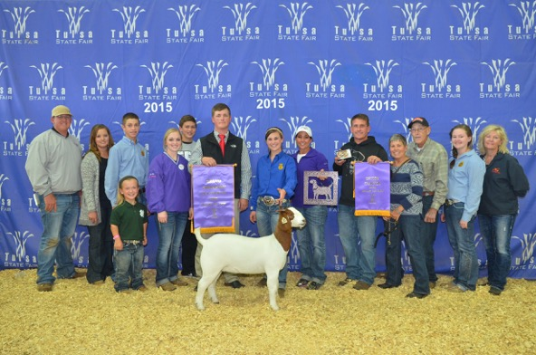 Grand Champion Doe Tulsa State Fair Jae Sewell