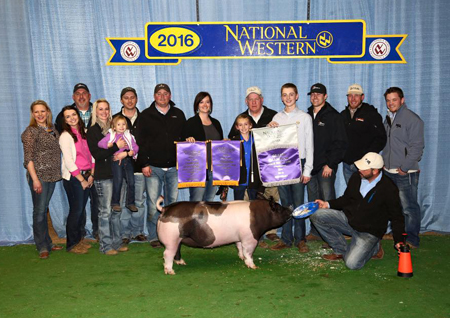 Blake Logan Sure Champ Pig NWSS