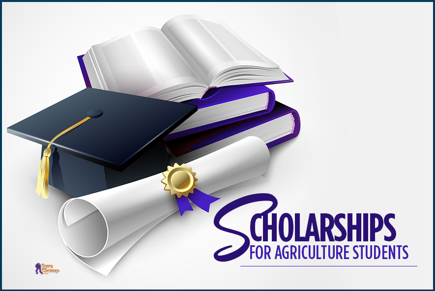 surechamp-scholarships-featured-jan2016
