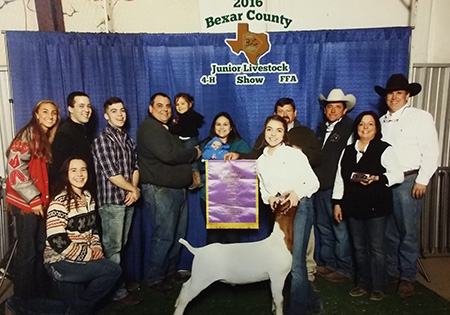 MaggieLouton-Bexar-County-2016-Grand-Goat