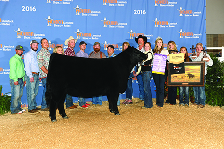 Calli West Supreme Champion Breeding Heifer Houston Livestock Show