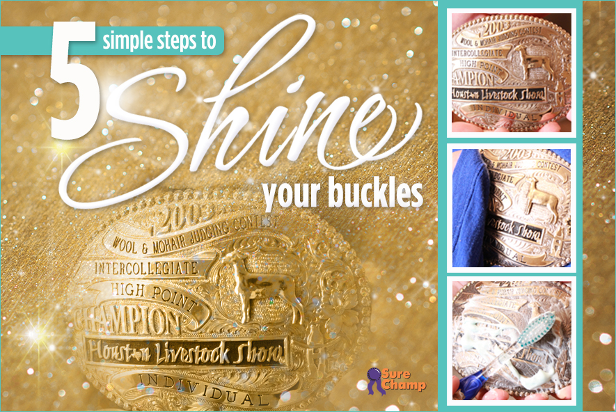 surechamp-buckles-april2016-feature